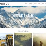 Virtue 6